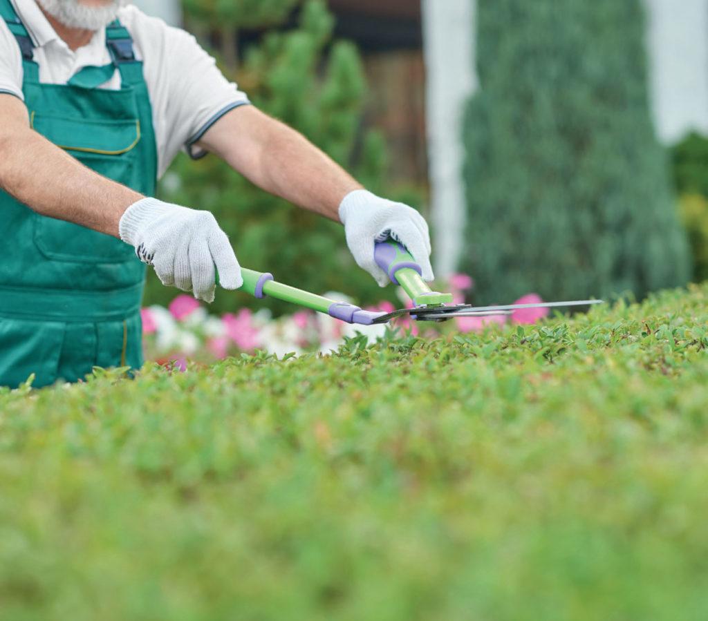 Le nombre d'entrepreneurs de jardins a explosé ces dernières années.